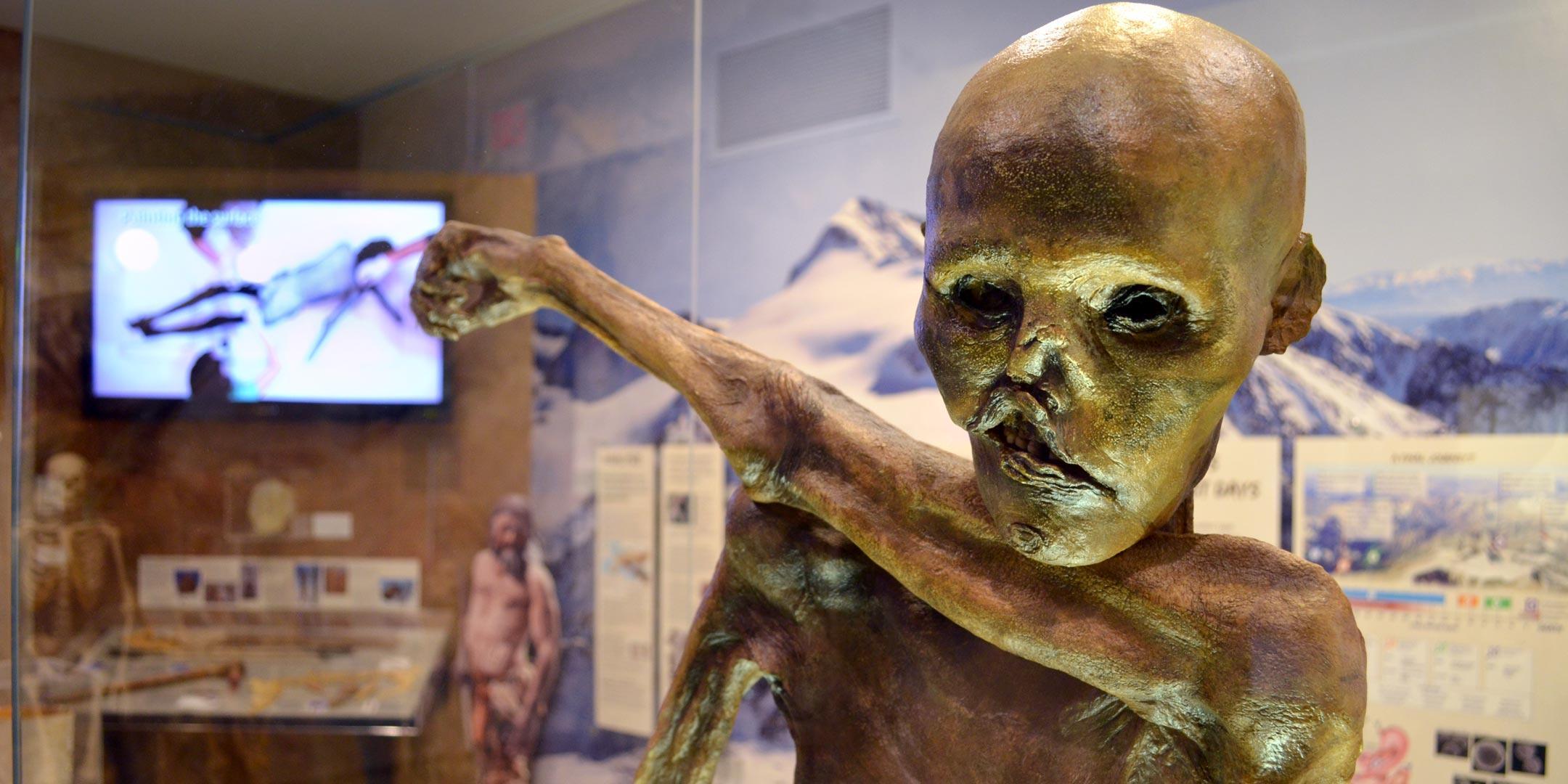 Ötzi the Iceman Exhibition Tour