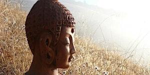 Insight Meditation one-day workshop - Auckland