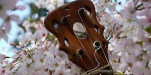 Son Fusion Jazz Concert at the Crypt | Concierto en la...