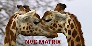 NVC Matrix - Workshop de Iniciação a Comunicação Não...