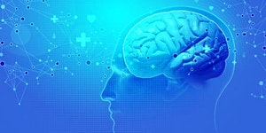 Brain 4.0 Trainingsprogramm