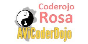 """CoderDojo """"Rosa"""" a Schio"""