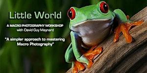 """LITTLE WORLD"" A Macro Photography Workshop - Little..."