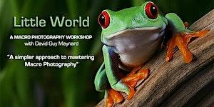 """LITTLE WORLD"" A Macro Photography Workshop - Tulsa OK"