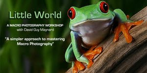 """LITTLE WORLD"" A Macro Photography Workshop -..."