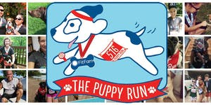 The Puppy Run 2016