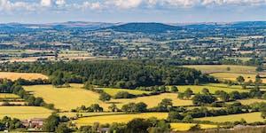 Rewilding Dorset