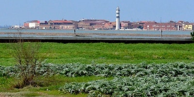 Venice Island Farms & Wine Tour
