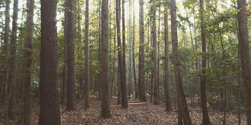 Serenbe Trails Tour