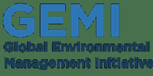 GEMI Summer Meeting: Resource Efficiency