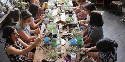 Fun Terrarium building workshop
