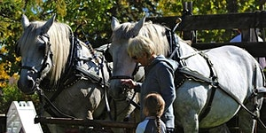 3rd Annual Hayride & Pumpkin Hunt (password on our...