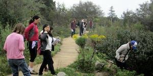 UC Santa Cruz Arboretum Phenology Workshop