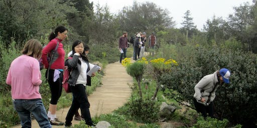 UC Santa Cruz Arboretum Phenology Workshop