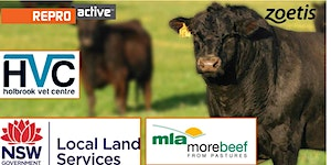 ReproActive Rosewood: a MLA More Beef from Pastures...