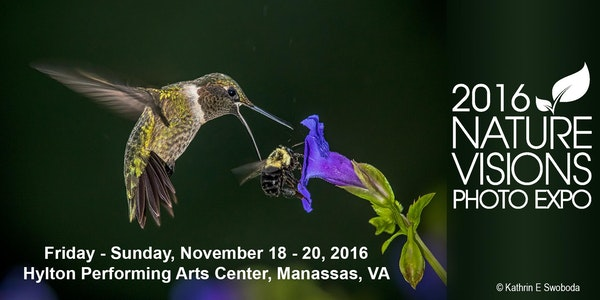 Nature Visions 2016 Photo Expo Tickets, Fri, Nov 18, 2016 at 9:00 AM | Eventbrite