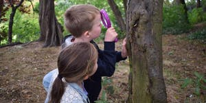 Hallowe'en Family Forest School at Stanley Park