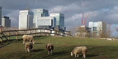 A Rubbish Trip: waste & environment themed walk, Isle of Dogs to Greenwich