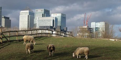 A Rubbish Trip: waste & environment themed walk, Isle of Dogs to Greenwich tickets