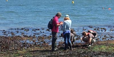 Capturing Our Coast Training Day - Marine Biological Association