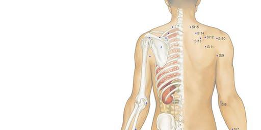 Take Home TCM: Head, Neck & Shoulder Acupressure
