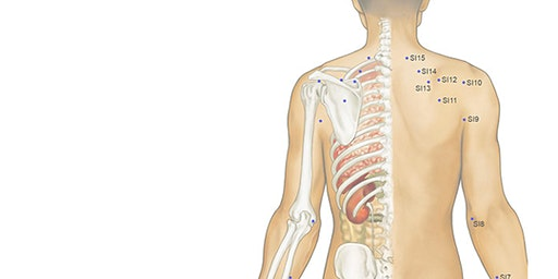 Take Home TCM: Head, Neck & Shoulder Acupressure