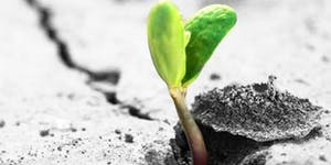 Thrive East Bay | Nov 20th | Restoring A Nation w/...