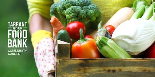 Kitchen Garden Cooking School Harvest Series
