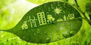 January Forum: Green Catwalk