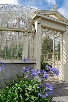 National Botanic Gardens of Ireland logo