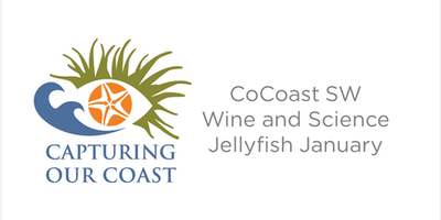 Capturing Our Coast Wine & Science - Jellyfish January