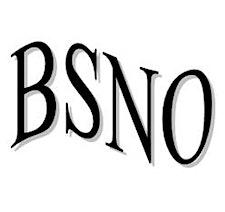 British Society of Neuro-Otology (BSNO) logo