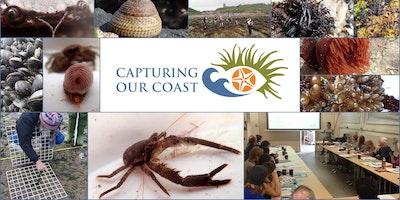 Capturing our Coast Training - Falmouth