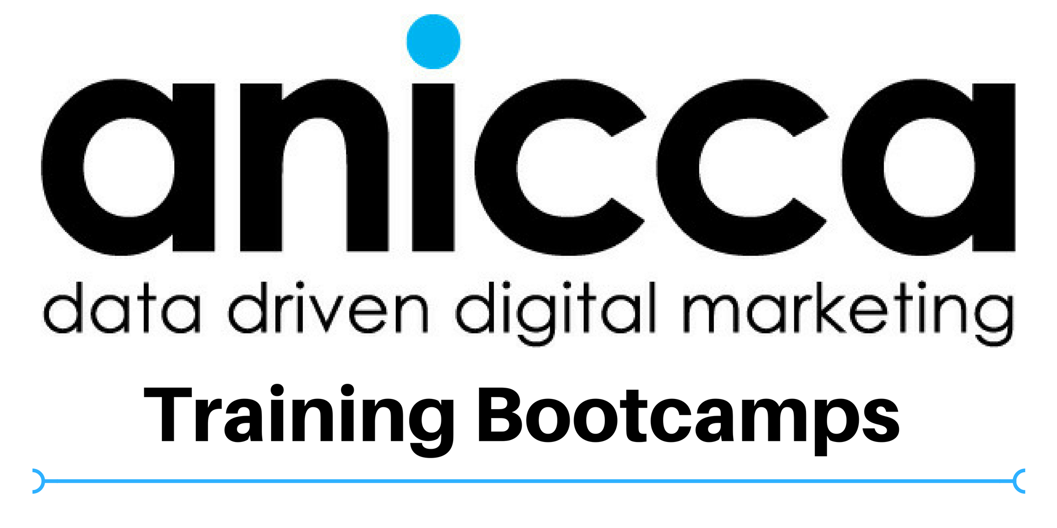 Anicca AdWords Training Boot Camp