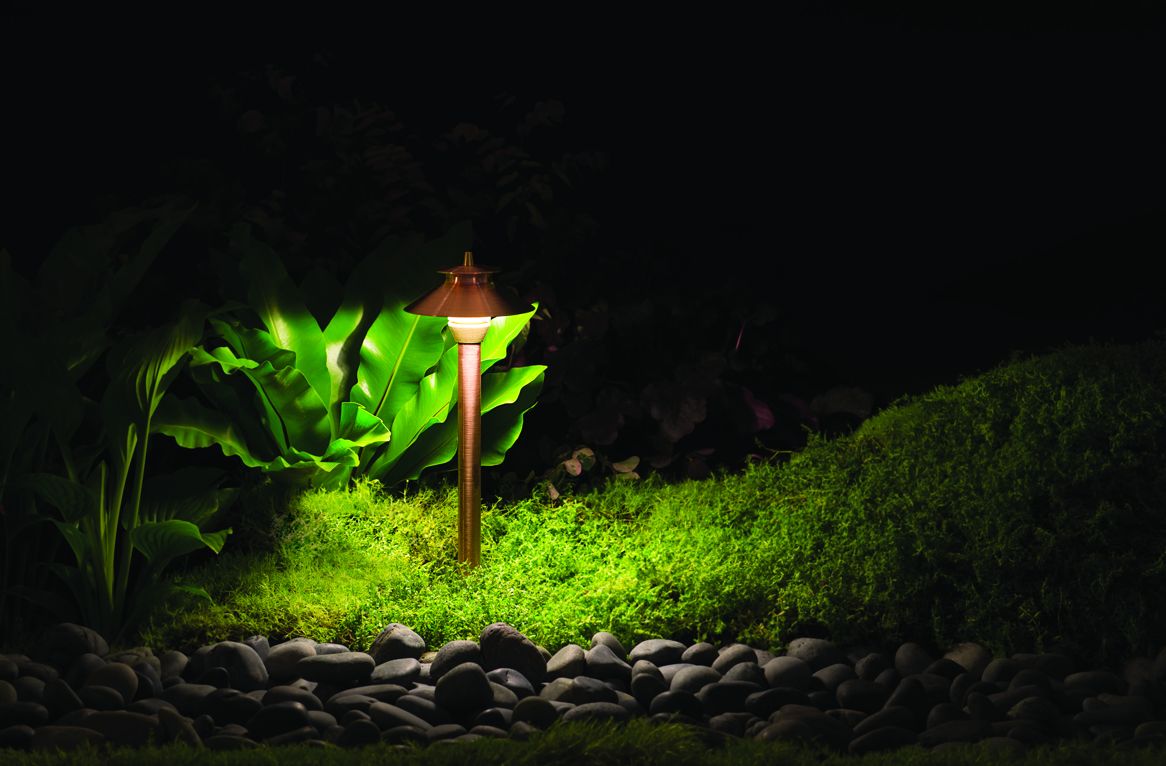 THIS EVENT HAS BEEN CANCELLED: Dark Sky Landscape Lighting