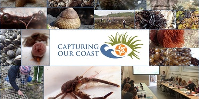 Capturing our Coast Training - Marine Biological Association UK