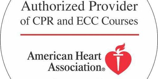 American Heart Association St. Louis MO BLS Healthcare Provider Cpr Class