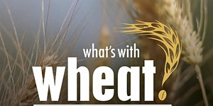 HEALTH Unplugged Special - What's With Wheat?