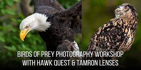 Birds of Prey Photography Workshop with HawkQuest & Tamron - Lecture, Shoot, & Critique - Boulder tickets