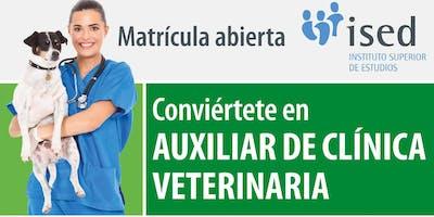Curso gratuito de iniciación al Auxiliar Clínica Veterinaria