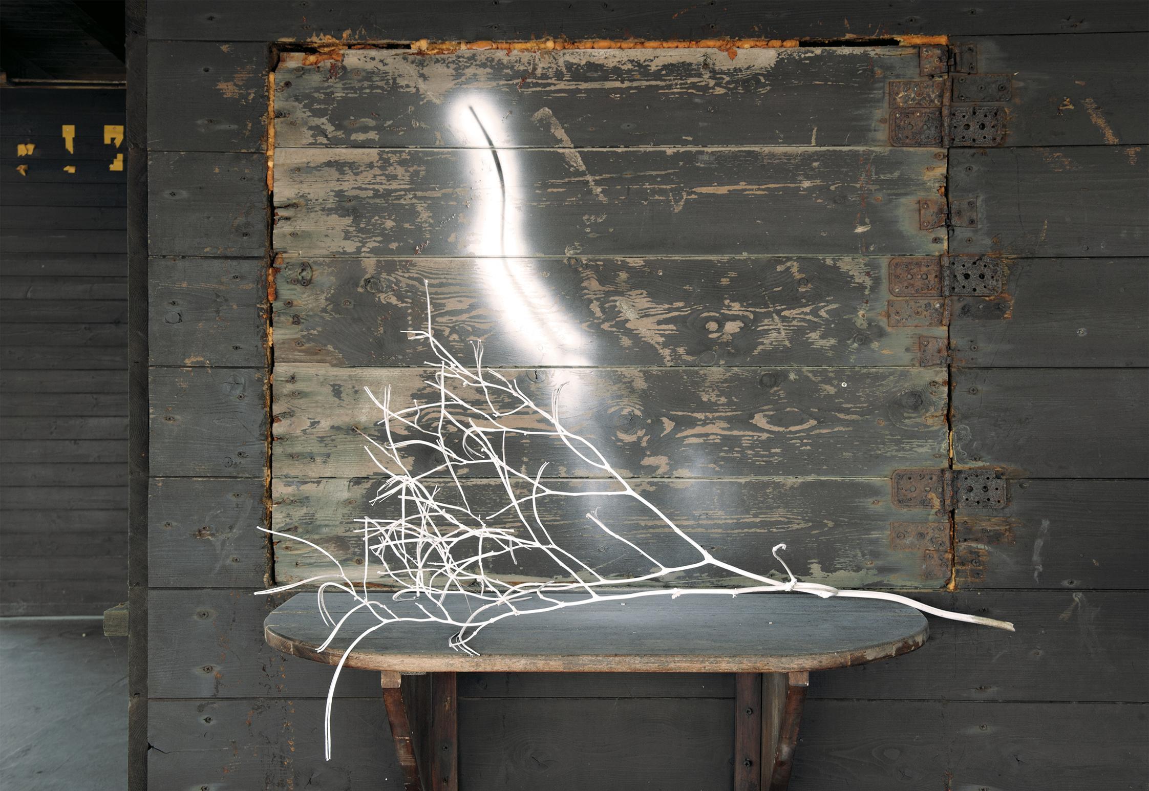 """Conferenza """"L'opera di Mario Cresci come iper"""