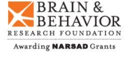 Brain & Behavior Research Foundation's Mental