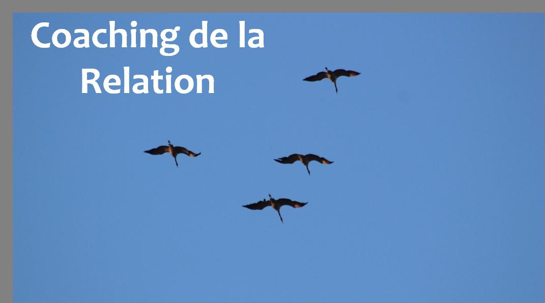 """Initiation au """"Coaching de la Relation"""" 30/03"""