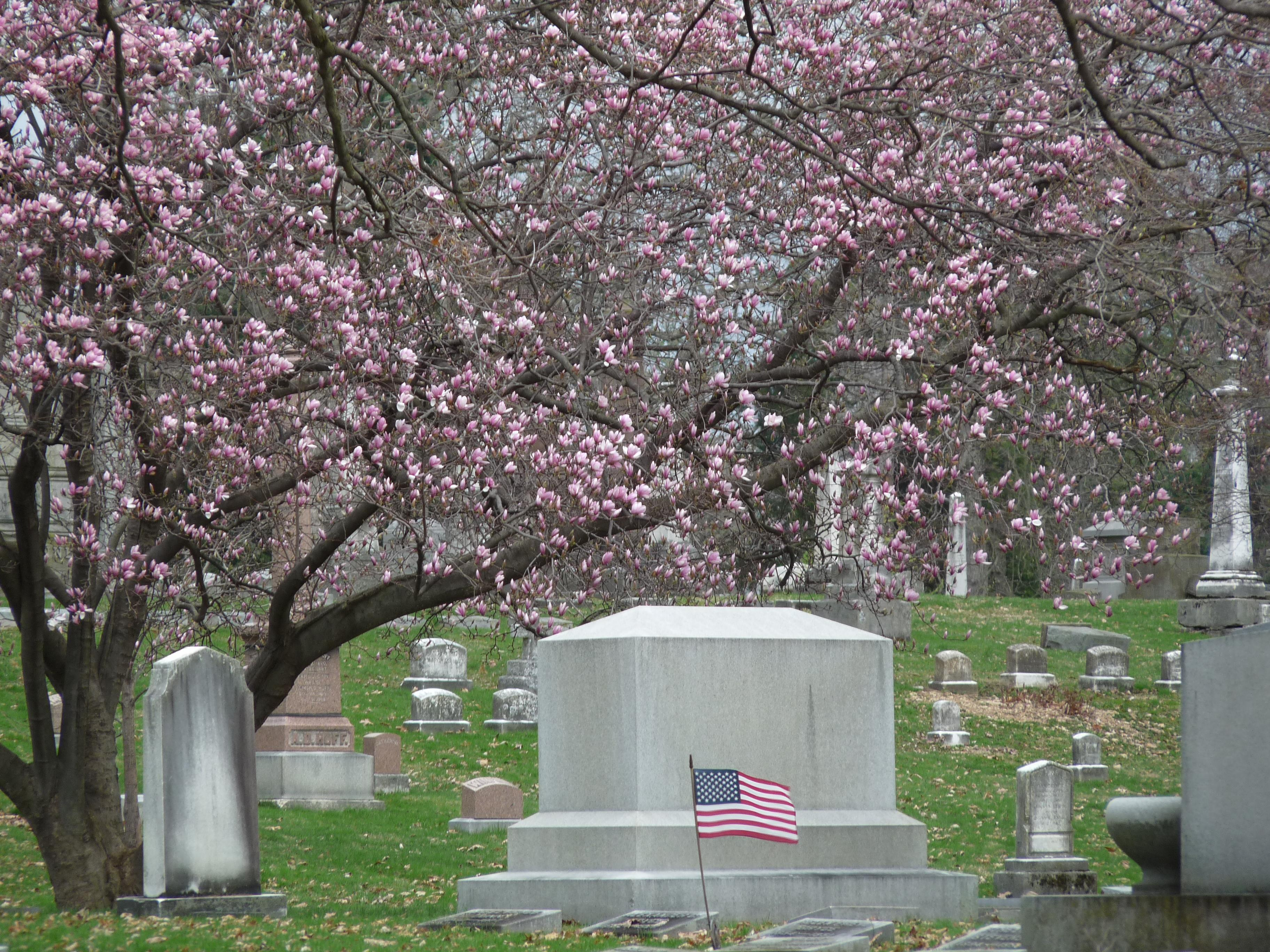 Spring Walk at Green Lawn Cemetery