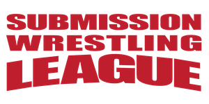 2017 Sub League Qualifier 1