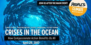 Crises in the Ocean: How Compassionate Action Benefits...
