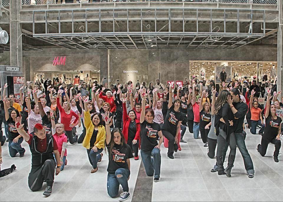 Image result for palisades center flash mob
