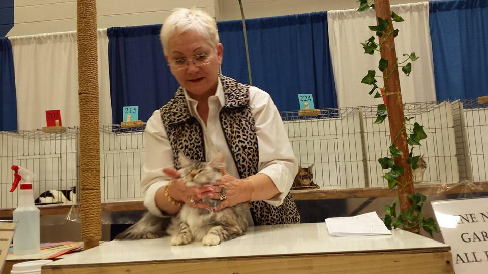 Westchester Feline Club Cat Show
