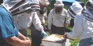 NY Bee Wellness Workshop- Honeybee Disease & Management