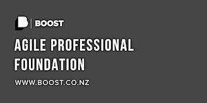 Agile Professional Foundation